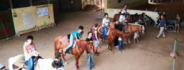 ישיבה נכונה על סוסים