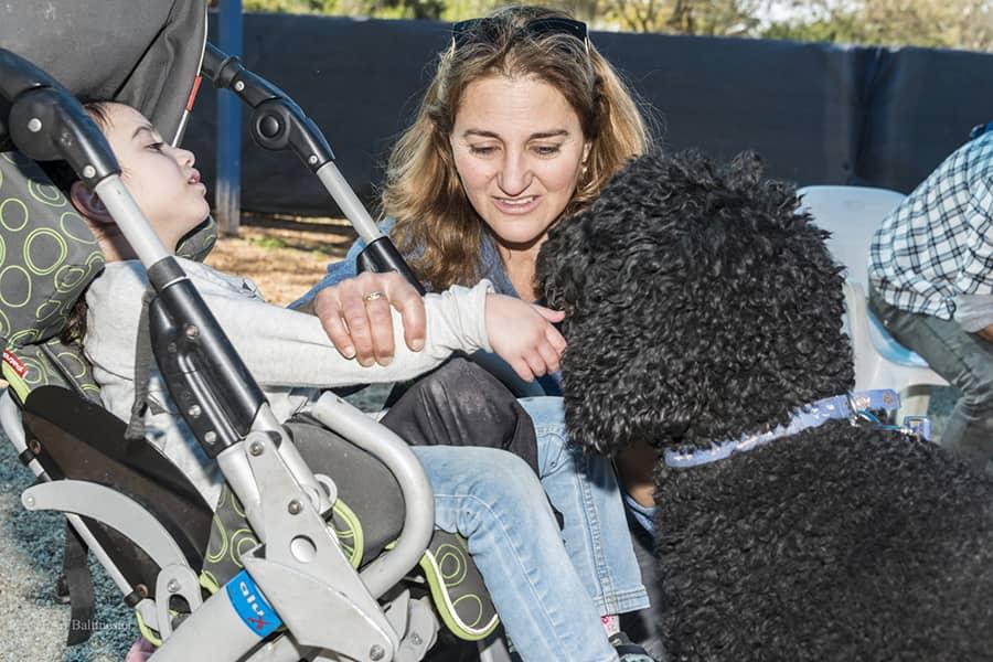 כלבנות טיפולית – מה, למה ואיך?