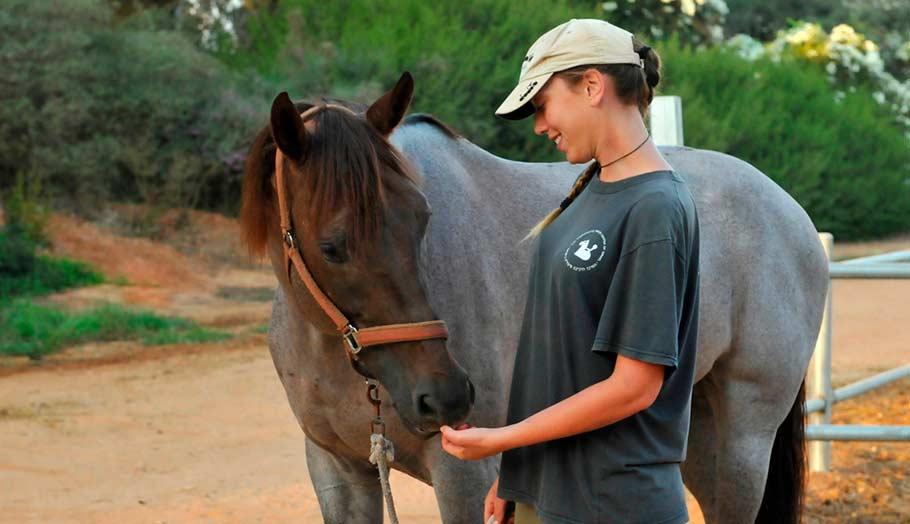 השלכות ההתנדבות על המתנדבים בחווה: מה בין טראומטיזציה משנית וצמיחה